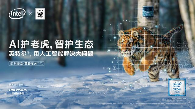 AI Protects Tiger Intelligence and Ecology